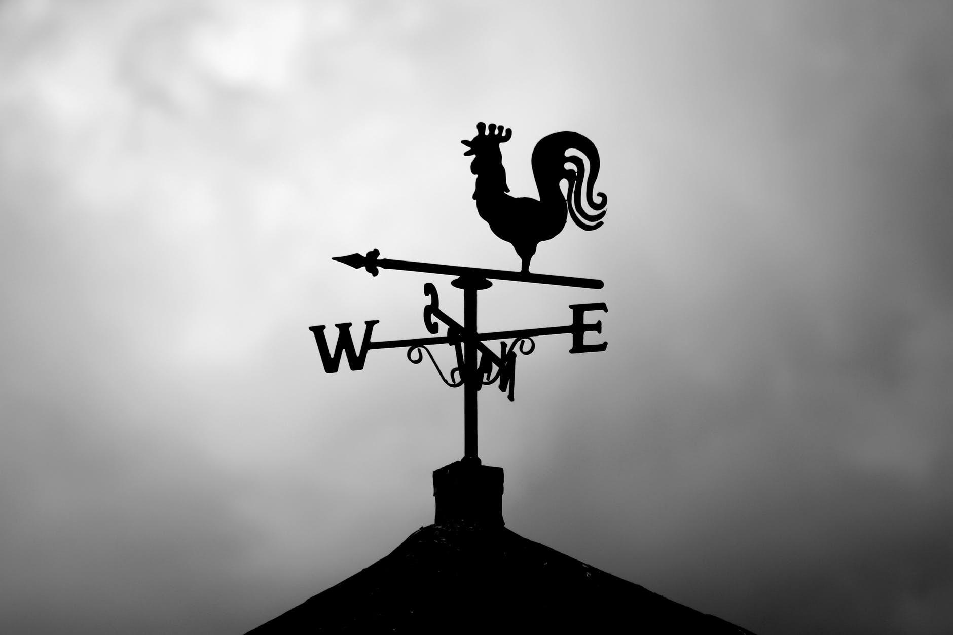 silhouette of wind vane