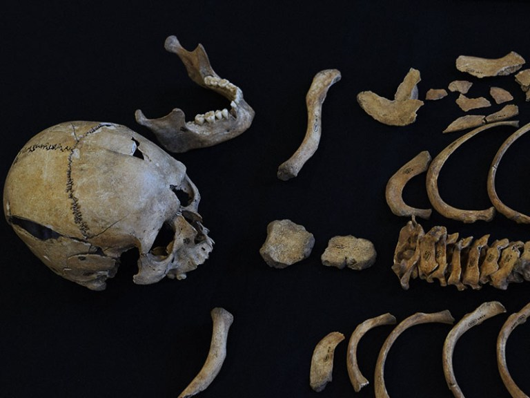 forensic_skeleton