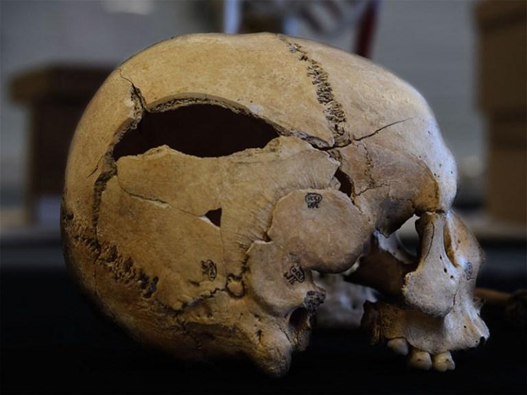 forensic_skull