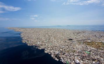 Toneladas de basura contaminan el mar Caribe