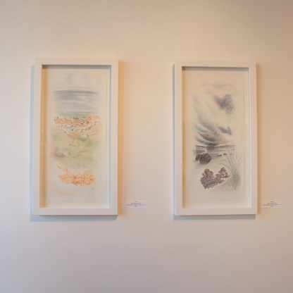 Drawing by Jane Irwin, Installation View at Sivarulrasa Gallery
