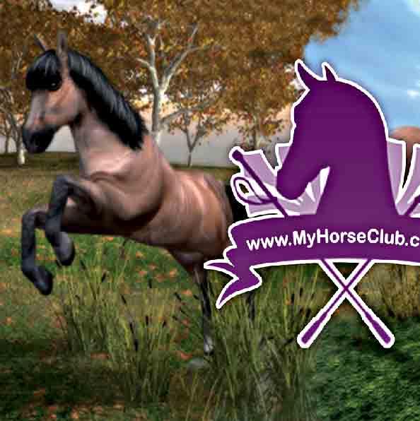 realistic horse games # 8