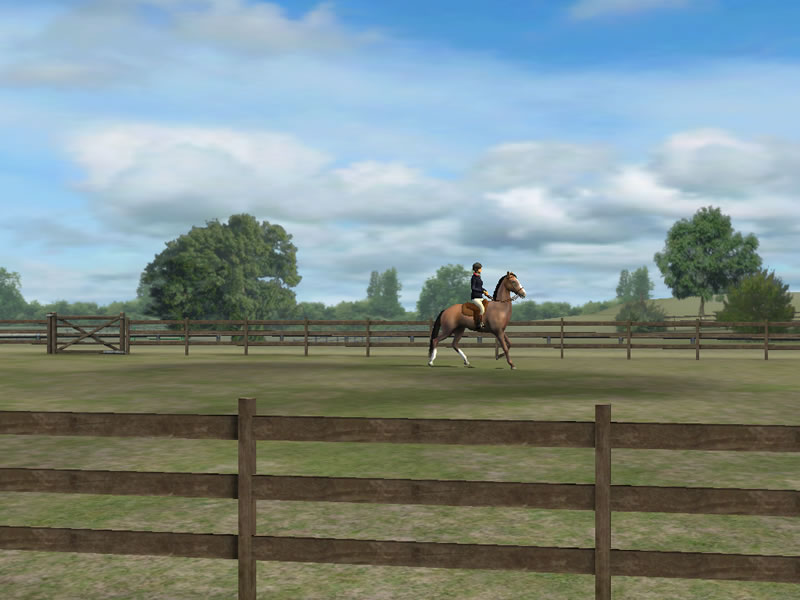 My Horse IPhone Or IPad Horse Game Horse Game AppHorse Games