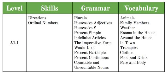 A1.1 Syllabus