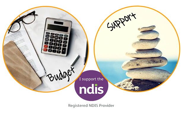 Virtually Accountable NDIS Plan Management Services - budget and support graphics.