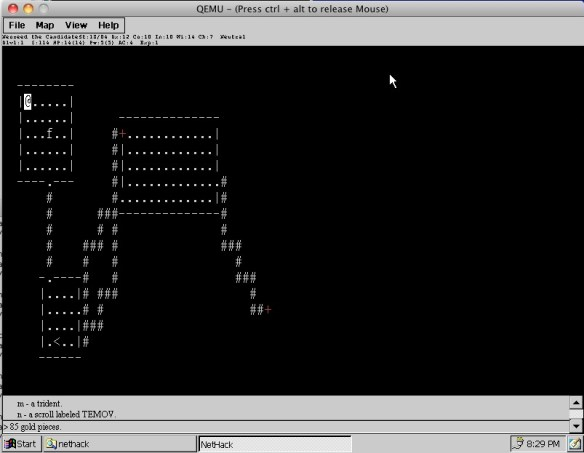 Nethack on CE text