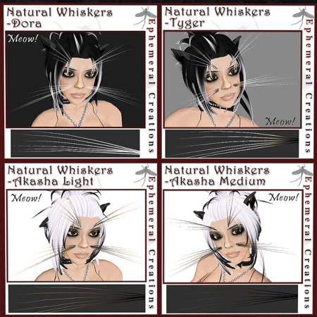 whiskers21