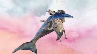 ANIMALIA SUM von Bianca Kennedy & The Swan Collective