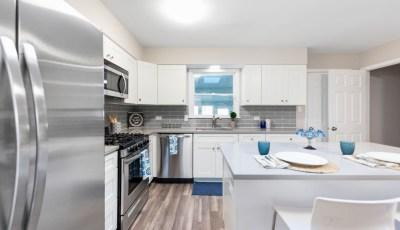 Single Family Home In Richton Park, IL 3D Model