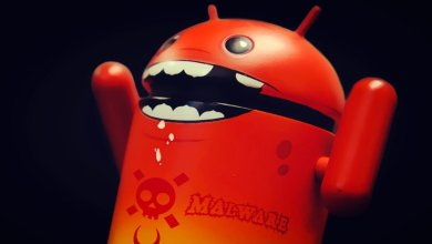New Rogue malware for Android
