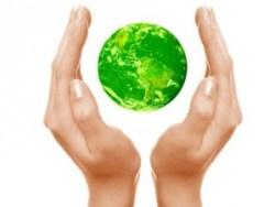 bola verde