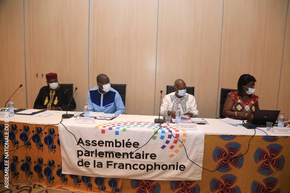 Assemblée parlementaire de la Francophonie : Les enjeux, effets et perspectives de l'application de la loi portant Code du Numérique au Bénin en débat