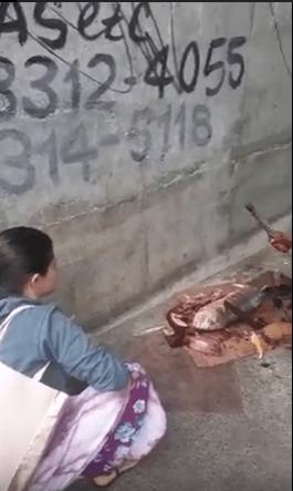 Mercado do Peixe pede apoio para as autoridades