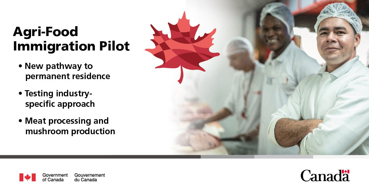 A total of 2,750 applications will be accepted annually throughout the pilot, which applies primarily to people who are already in Canada.