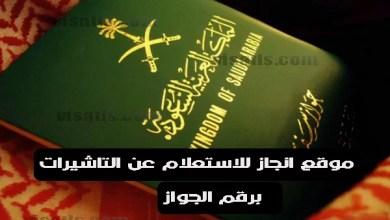 انجاز استعلام عن تاشيرة برقم الطلب الخاص بجواز السفر