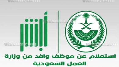 استعلام وزارة العمل السعودية – الاستعلام عن موظف وافد