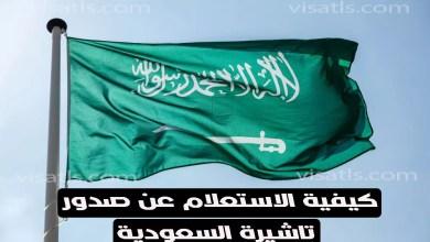 الاستعلام عن صدور تاشيرة وموقع إنجاز للاستعلام عن التأشيرات وثائق فيزا السعودية للأجانب