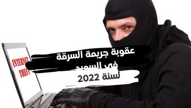ترتبط عقوبة جريمة السرقة في السويد، بعدة دوافع للفعل الإجرامي، لكن القانون الجديد نظمها وضبطها بشكل جيد