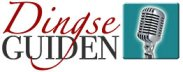 Dingseguide logo