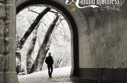Amund Bjønness CD