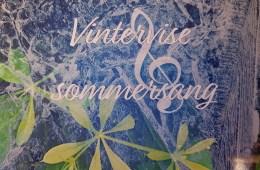 Birger Aasland - Vinterviser omslag