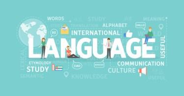 Insegnamento di una lingua straniera