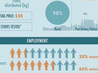 2013 Results Report Infographics