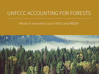 UNFCCC Accounting for Forests