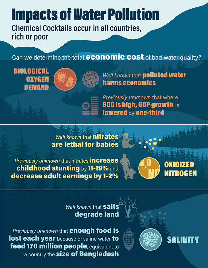 Impacts of Water Pollution Infographic