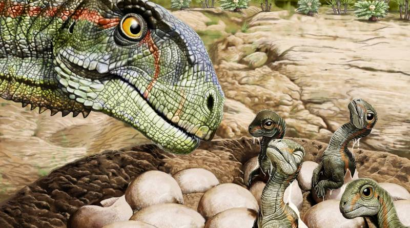 Dinossauros gigantes tinham estrutura social complexa, mostra novo estudo – 23/10/2021 – Ciência