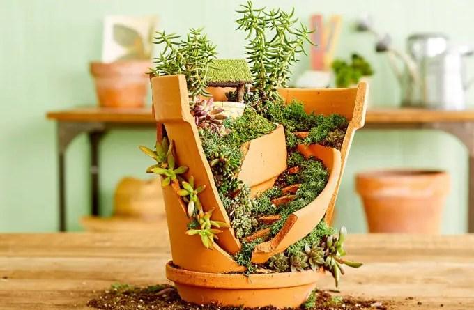 30 ideias incríveis de jardins com suculentas