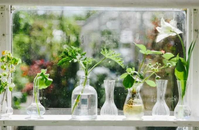 5 ideias plantas quarto westend 08 Vision Art NEWS