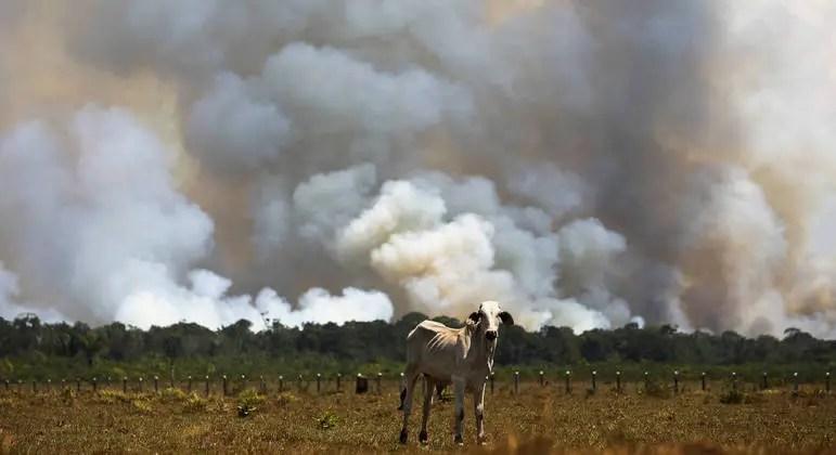reuters incendio amazonas 1500 10092021100230821 Vision Art NEWS