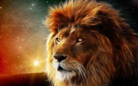 3d_lion-wide