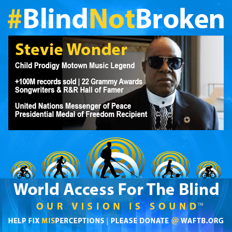 Stevie Wonder. Child prodigy Motown Music Legend. +100 Million records sold. 22 Grammy Awards. Songwriters and Rock and Roll hall of Famer. United Nations Messenger of Peace. Presidential Medal of Freedom recipient. Photo of Stevie Wonder followed by WAFTB logo. Tagline: Help Fix Misperceptions. Please donate @ WAFTB.ORG