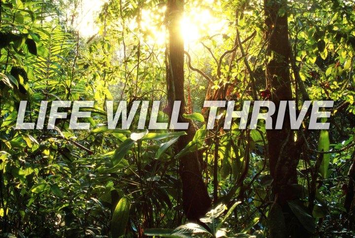 rainforest-action