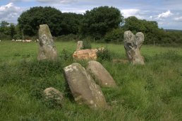 05. Robinstown Great Stone Circle, Co. Wexford