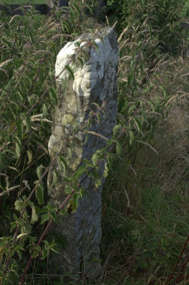 13-drumlohan-ogham-stones-souterrain-waterford-ireland