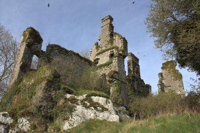 02. Castlelyons Castle, Cork, Ireland