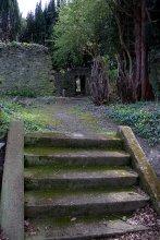 04. St Patrick's Church, Kildare, Ireland