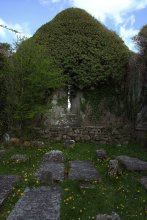 08. Drumcreehy Church, Clare, Ireland