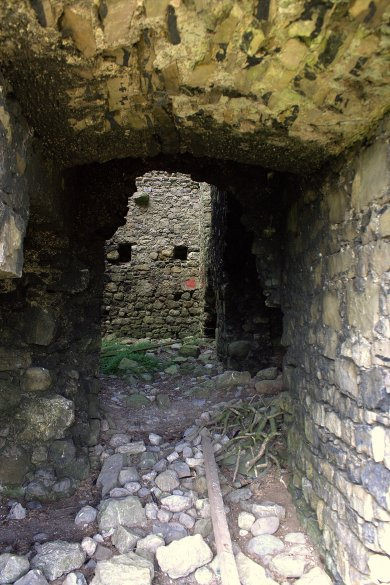 06. Rattin Castle, Westmeath, Ireland