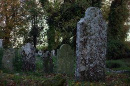 09. Castletown Kilpatrick Church, Meath, Ireland
