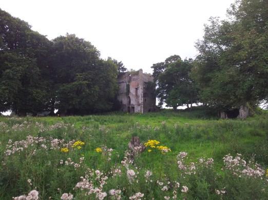 31. Dangan Castle