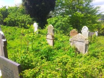 11. Old Kilbride Cemetery