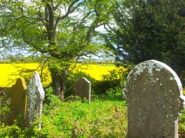 12. Old Kilbride Cemetery