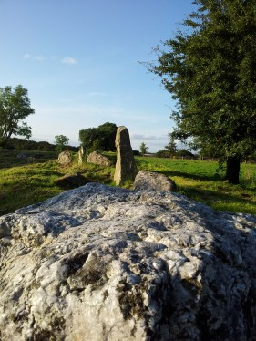 13. Castleruddery Stone Circle & Henge