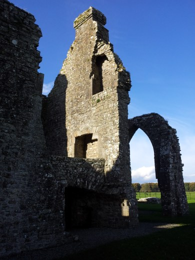 16. Bective Abbey, Co. Meath