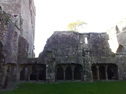 28. Bective Abbey, Co. Meath
