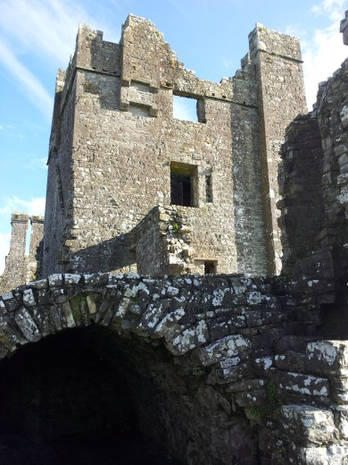 41. Bective Abbey, Co. Meath